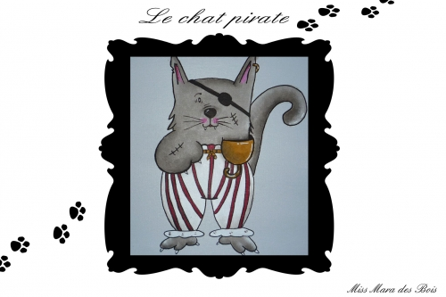 chat pirate patte.jpg